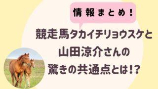 競走馬タカイチリョウスケ
