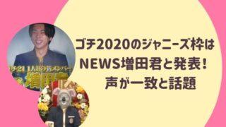 ゴチ2020のジャニーズ枠はNEWS増田君