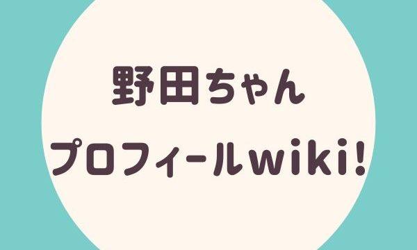 野田ちゃんプロフィールwiki