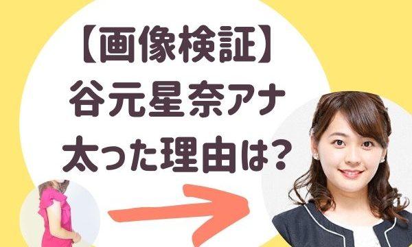【画像あり】谷元星奈(たにもとせいな)アナのプロフィールwiki!太った理由は?ミス千葉大の写真も!